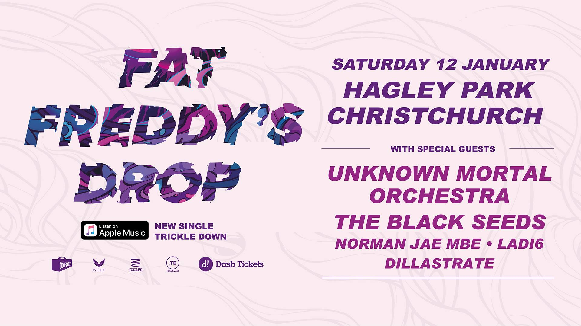 Fat Freddy's Drop + Special Guests – Live in Hagley Park